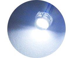 画像2: ★φ5★大面積発光素子LED★昼光色★(20個入)